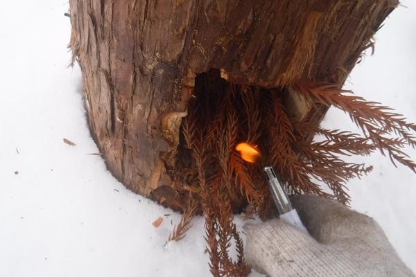 着火剤に火を燃え移らせながら燃やせば5分程度で着火します。木の乾燥具合、種類、環境によって変動するので、火が弱い場合はバーナーで燃やしたりうちわ仰いで燃焼を促してください。
